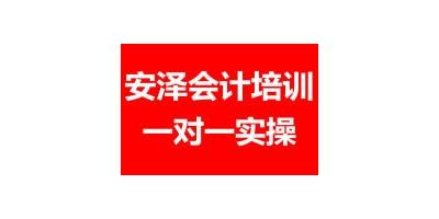 深圳一对一会计培训班 零基础实操做账