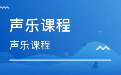 北京顺义专业成人/儿童声乐一对一培训免费试课
